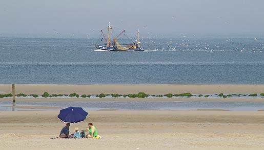 strand ameland2
